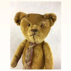 Large mohair teddy bear with short pile gold fur
