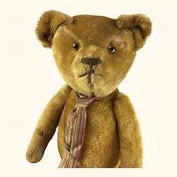 Large mohair teddy bear with short pile gold fur