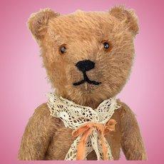 Mohair teddy bear with apricot fur