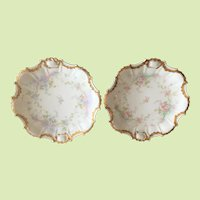 Pair of Antique French Limoges Plates...Rare Shape