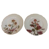 Pair of 19th Century Haviland Limoges Plates Faces and Flowers