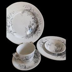 Antique Ashworth Bros. Ironstone English Aesthetic Ware Place Setting..Victoria Pattern with Bug