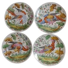 Set of 4 French Sarreguemines Chelsea 1740 Bird Plates