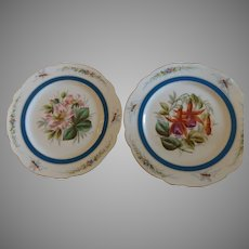 Pair of 19th Century Cabinet Plates with Insects & Flowers