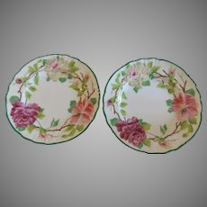 Pair of 19th Century Plates from Cowell & Hubbard