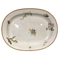 Rare Large 19th C Wedgwood Platter W/ Insect Garden Bug Decoration