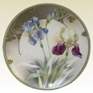 Hand Painted RS Germany Porcelain Plate With Iris Flower Decoration