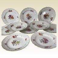 """Set of 10 KPM Porcelain Botanical Decorated 9.5"""" Plates"""