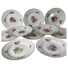"Set of 10 KPM Porcelain Botanical Decorated 9.5"" Plates"