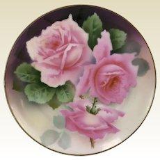 Hand Painted Bavarian Porcelain Cabinet Plate W/ Pink Rose Decoration Signed