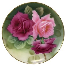 Hand Painted Bevarian Porcelain Cabinet Plate W/ Pink Rose Decoration Signed