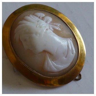 Oval Shell Cameo Brooch