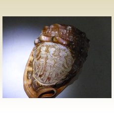 Fine Cameo  hand carved in compete Shell