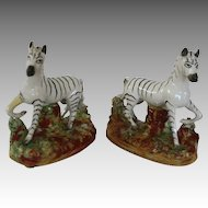 Staffordshire Zebras