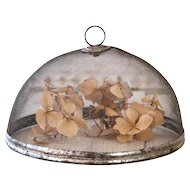 "Vintage French Food Screen - Small Size - 9"" Diameter - French Farmhouse Kitchen - Shabby Chic Garden"