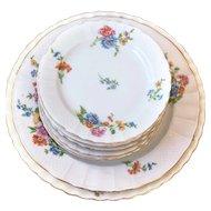 Vintage 10 Pieces Porcelain Dessert Set - Haviland Limoges and Mintons