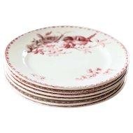 Early 1900s Ironstone Dinner Plates - Set of Six - Sarreguemines Favori - Red / Pink Transferware
