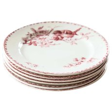 Early 1900s Ironstone Dinner Plates - Set of Six - Sarreguemines Favori - Red / Pink Transferware
