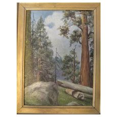 Early 1900's - Oil on Board Sequoia Nat'l Park - by Yiva Sparks