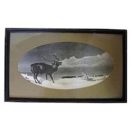 Framed 1800's Black and White Elk Print