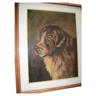 Saint Bernard Pastel 1914 By Ruth Buck