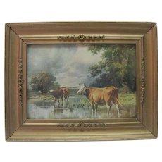 1900 R. Arkinson Fox - Cow Print