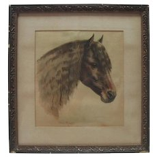 1900's Helena Maquire - Watercolor Pony Painting