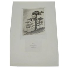 """Original Copper Plate Etching """"Brothers"""" by Richardson Rome"""