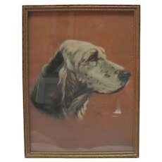 1938 Alpnarly Lyster - English Setter Dog Print