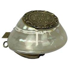 Snuffbox made from sea snail shell - Silver plated, Turbo Cornutus - 19th century