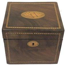 Intarsia squares tea box - Wood - 19th century - United Kingdom