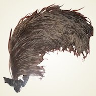 Gorgeous large and very full feather for hats