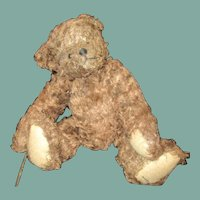 Darling distressed Teddy bear