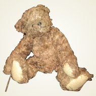 Darling distressed Teddy bear