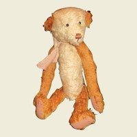 Charming mohair Teddy bear by Debra Williams