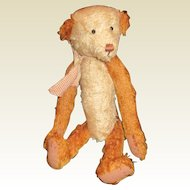Charming mohair Teddy bear by Debra Williams