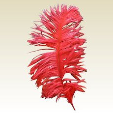 Beautiful vibrant Feather for your doll hat