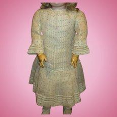 Large  pintucking antique dress