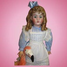"Wonderful 33"" Simon Halbig dressed as  Alice in Wonderland"