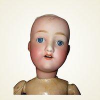 Doll nippon   new
