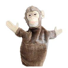 Vintage Steiff Chimpanzee puppet, ear tag