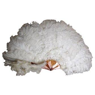 Victorian ostrich feather fan, faux tortoiseshell