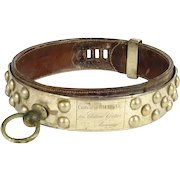 French antique dog collar, Bull Mastiff, studded nickel plated brass and leather