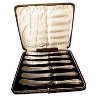 Vintage silver cake knives, dessert knives, cased
