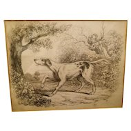 19th Century pencil study of a hunting dog, framed