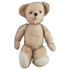 Vintage Pedigree Teddy bear with growler