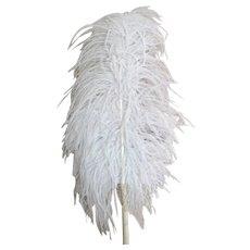 Antique Edwardian ostrich feather fan