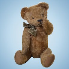 Authentic french bear 45cm was born in 1930