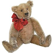 "ADORABLE 13"" Antique 1908-10 German Steiff Teddy Bear"