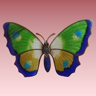 Vintage Enamel Gilt Metal Butterfly Brooch